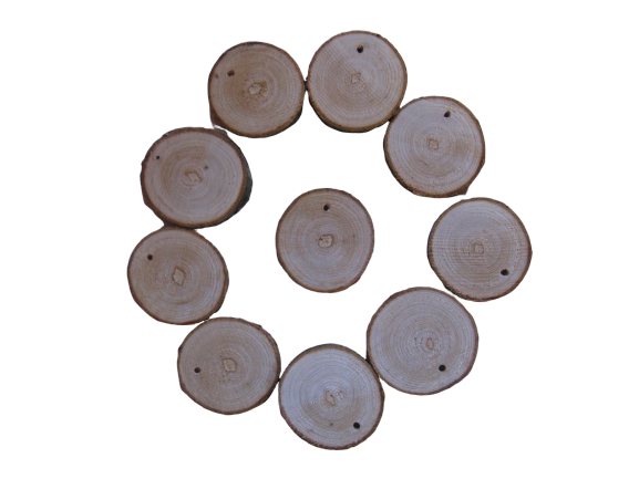 40mm wood slices with drilled holes 10pc set